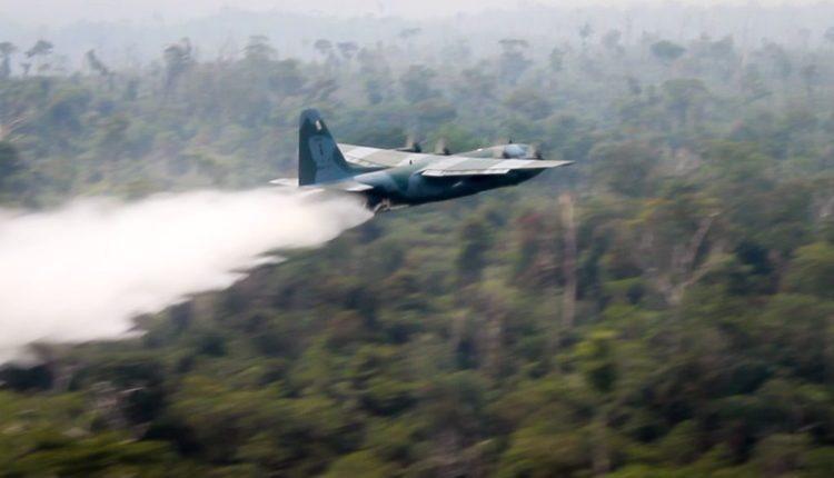 STF arquiva ação sobre fala de Bolsonaro atribuindo a ONGs culpa pelas queimadas na Amazônia