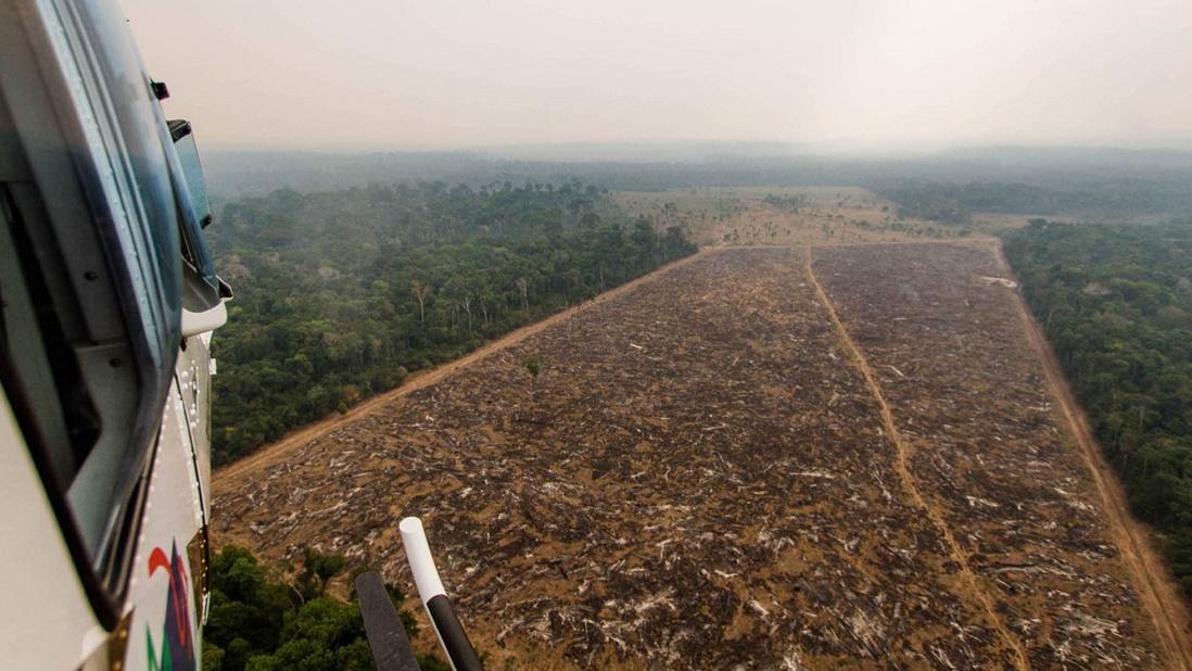 Procuradoria pede informações sobre desmatamento e incêndios na Amazônia