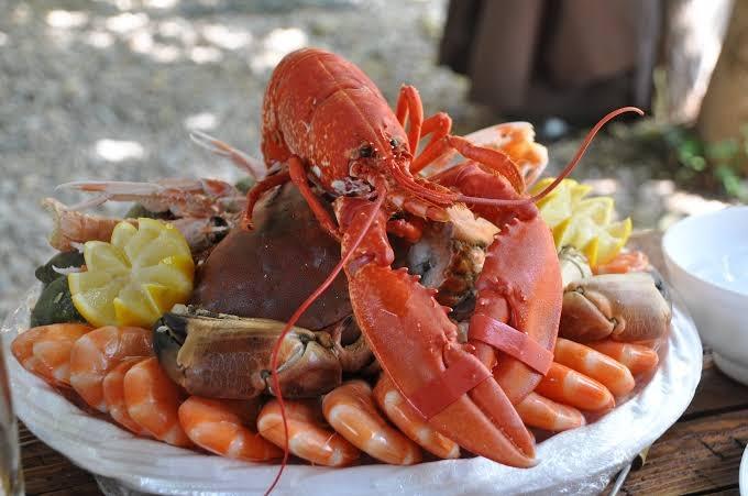Até o momento, não há risco de consumo de frutos do mar, diz ministro