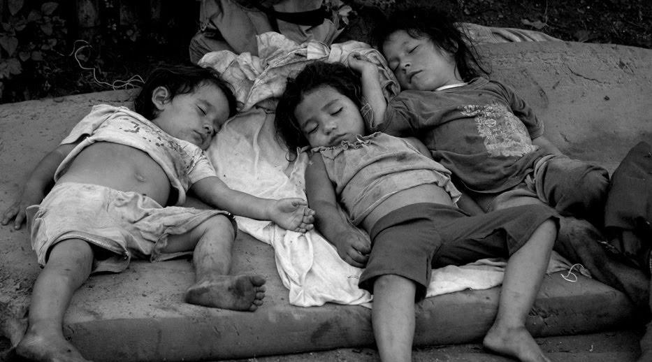 Os Filhos do Brasil