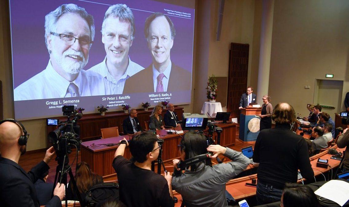Nobel de Medicina sai para dois americanos e um inglês
