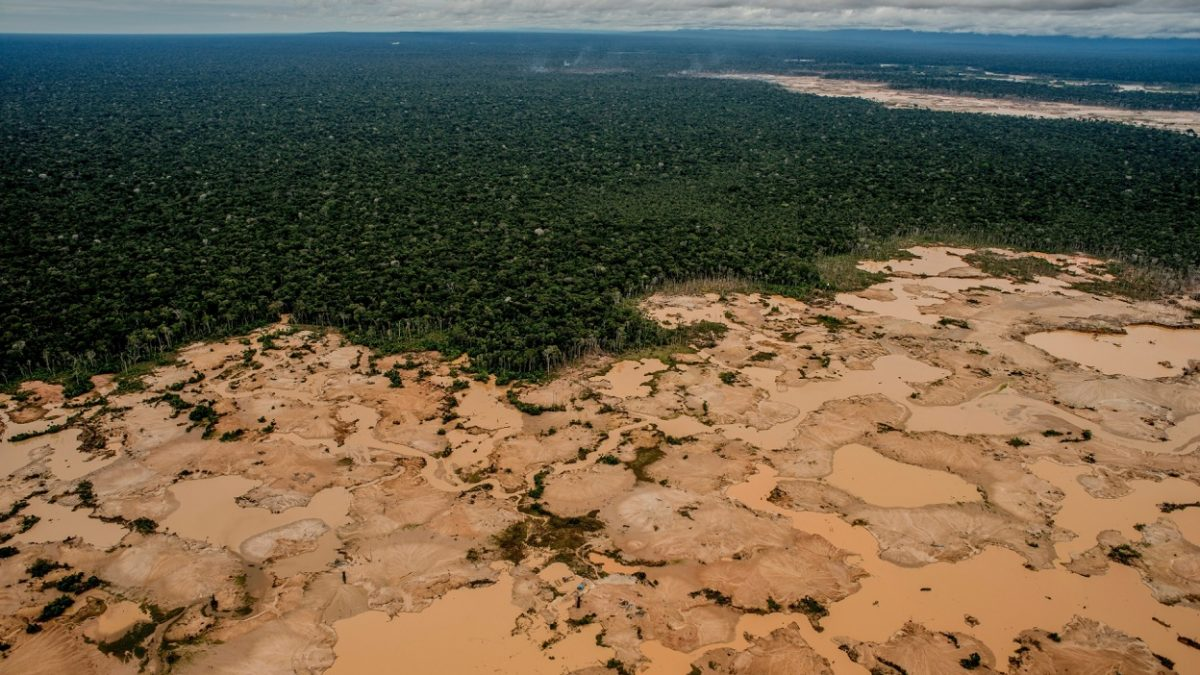 Desmatamento na Amazônia aumenta 103,7% em novembro e bate recorde