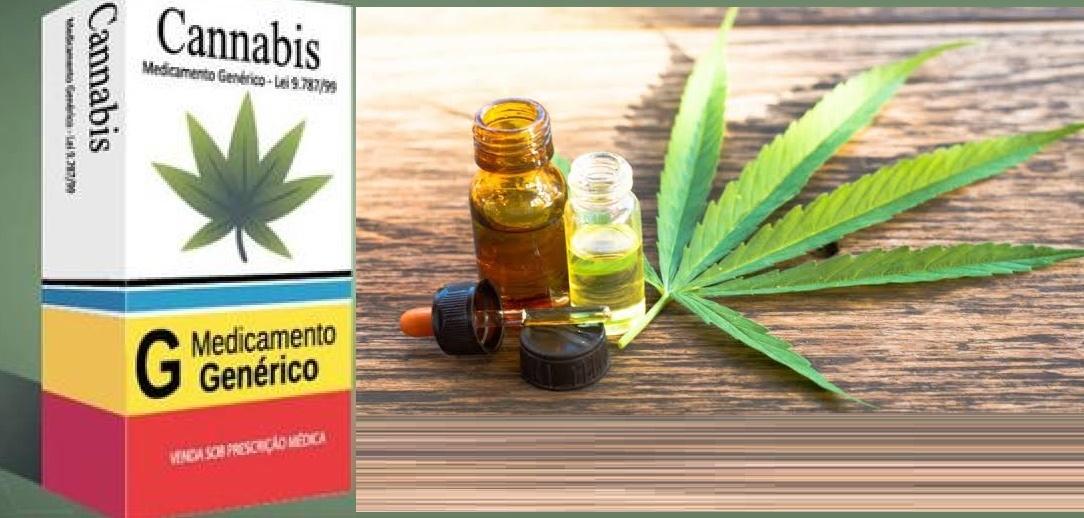 Anvisa aprova regulamentação do uso medicinal da maconha