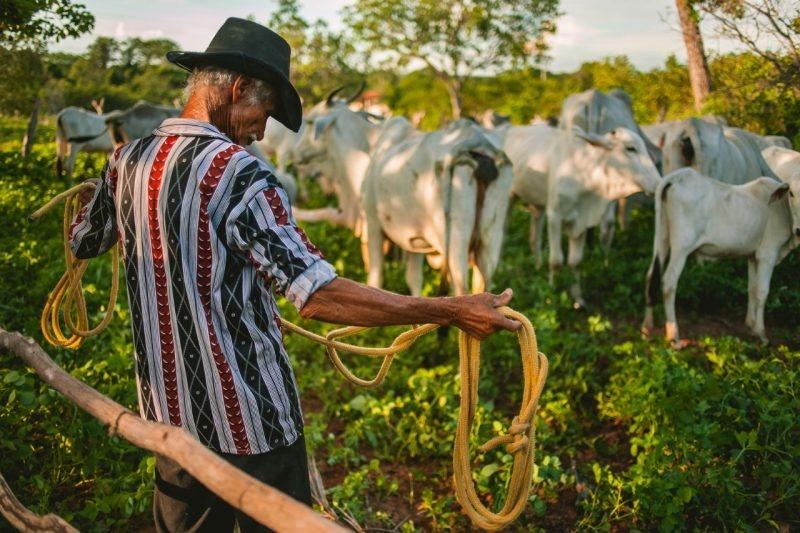 Governo nega aposentadoria a 260 mil trabalhadores rurais em 2019, recorde da década