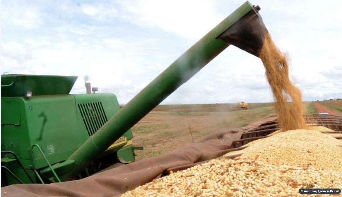Ipea: setor agropecuário pode crescer até 2,5% apesar da covid-19