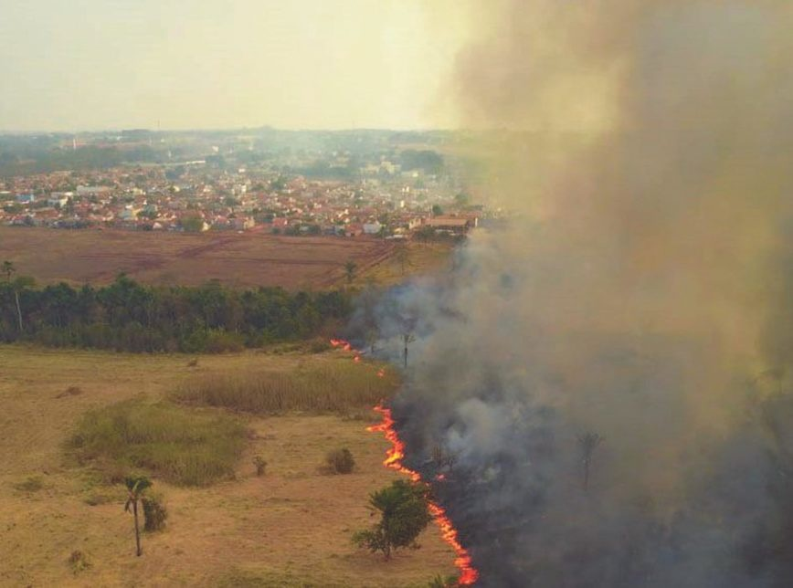 Deputados e senadores visitam áreas queimadas no Pantanal