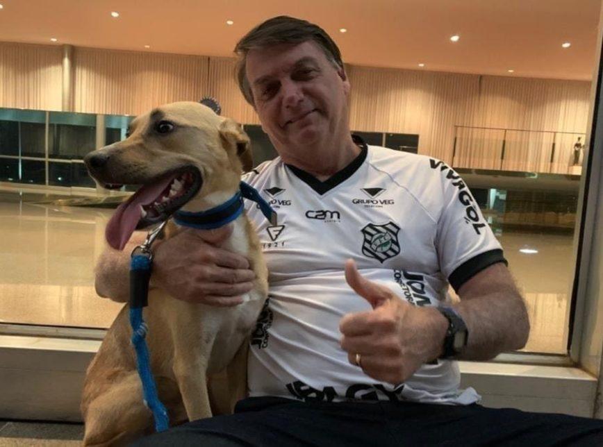 Bolsonaro sugere que vacinação obrigatória é só para cachorro