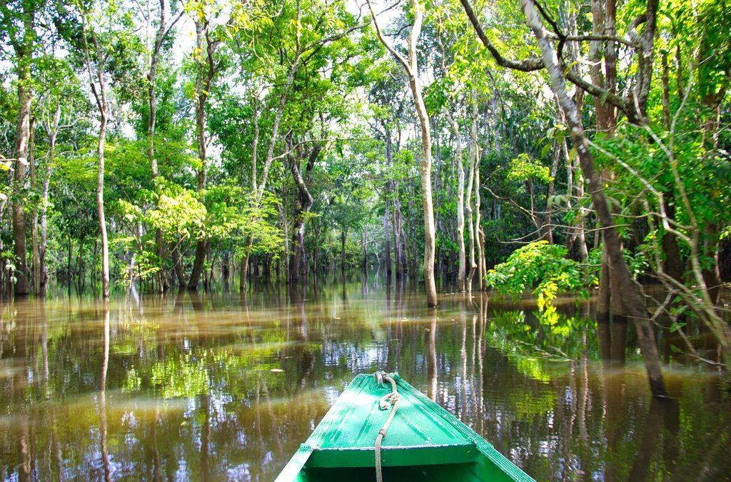 Amazonas: Turismo de isolamento é um dos destaques no coração verde do mundo