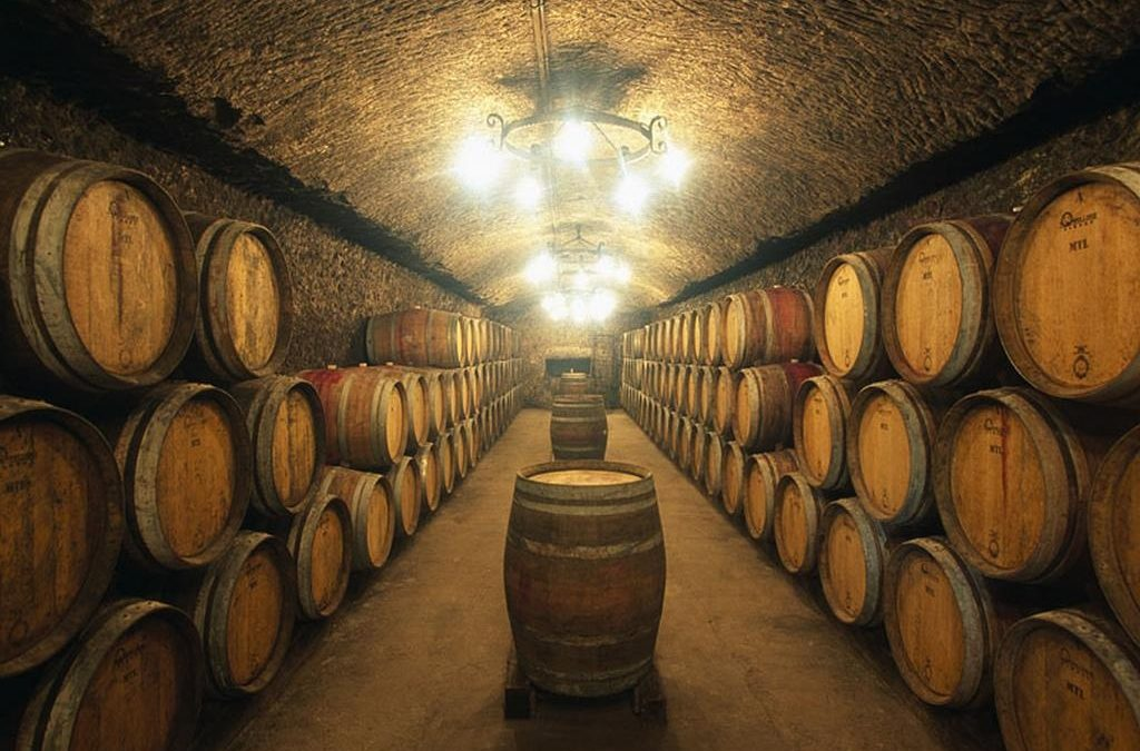 Viña Errazuriz, pioneira e expoente da viticultura chilena