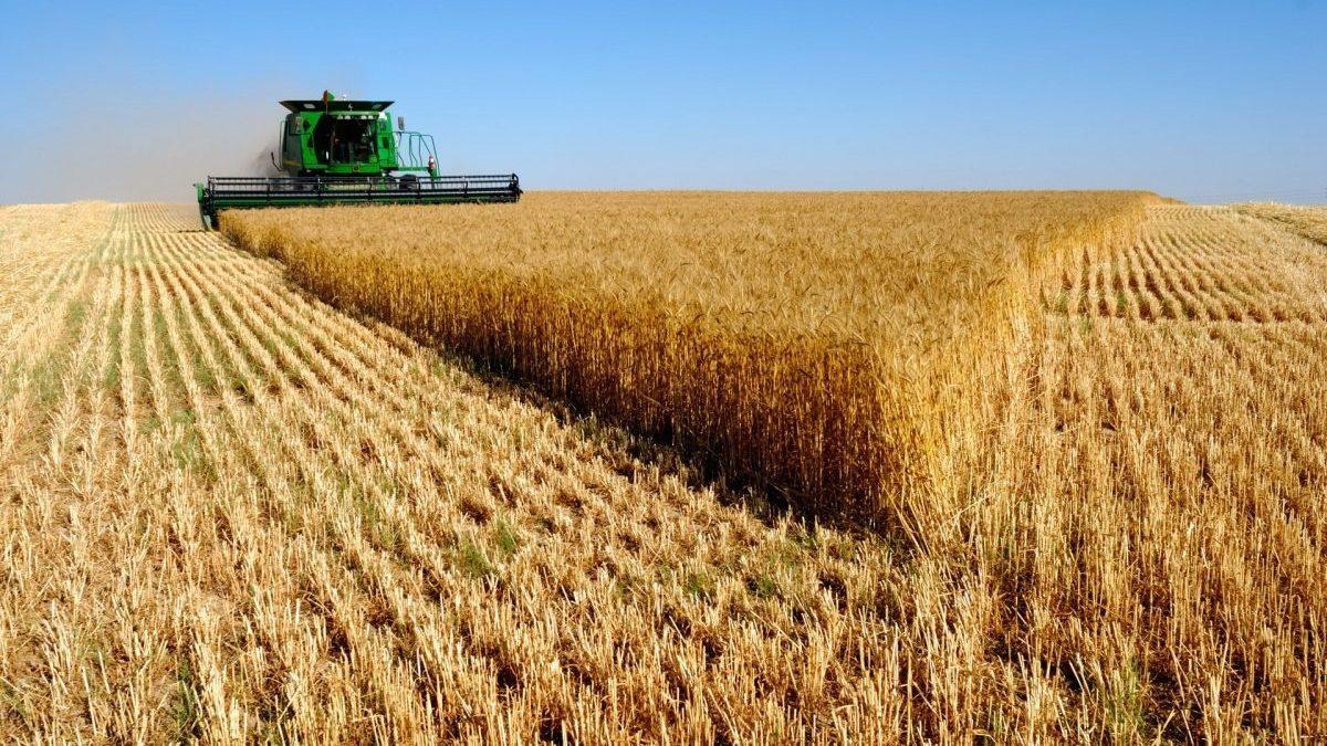 Produção do agronegócio supera R$ 1 trilhão e já está impulsionando a economia